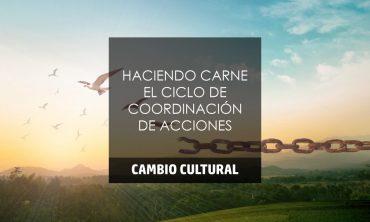 HACIENDO CARNE EL CICLO DE COORDINACIÓN DE ACCIONES